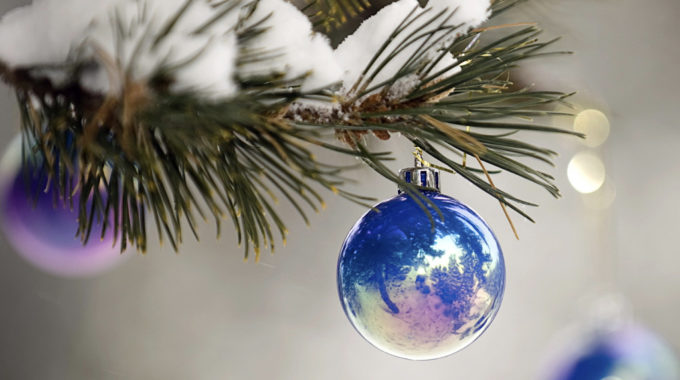 Trasplante Capilar, El Regalo Perfecto De Navidad